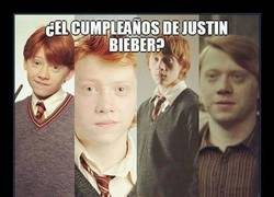 Enlace a Malditos muggles... ¡Hoy es el cumpleaños de Ron! ¡Ron es nuestro rey!