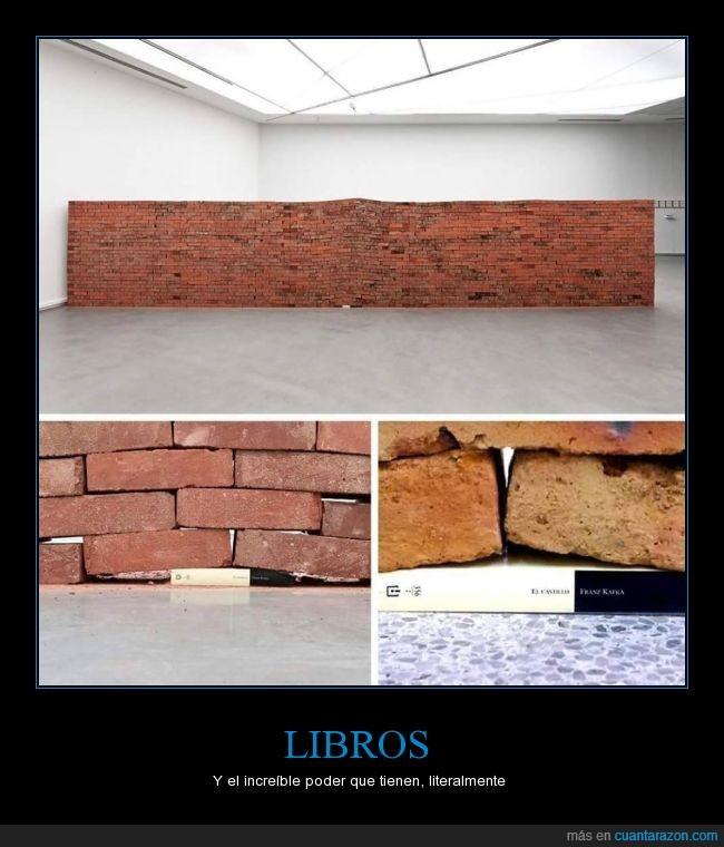 El castillo,Franz Kafka,fuerza,Jorge Mendez Blake,ladrillos,Libros,literal,muro,poder