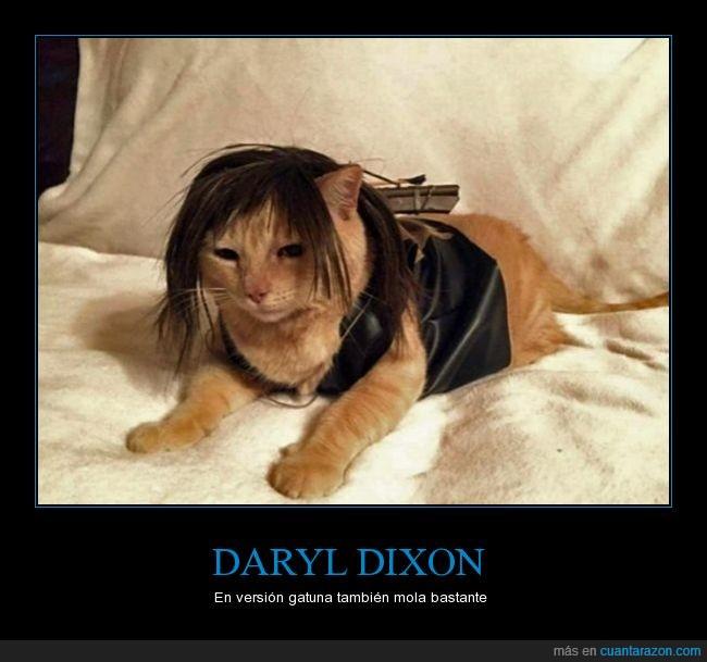 cosplay,Daryl Dixon,disfraz,gato,Norman Reedus,The Walking dead