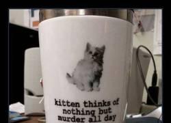 Enlace a Por fin una taza nos lo confirma
