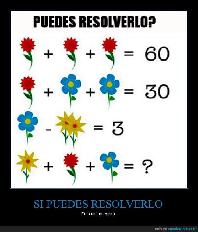 flor,juego,matematicas,planta,reto,suma