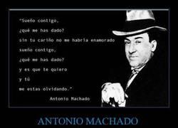Enlace a Recordemos estos bellos versos de Machado...