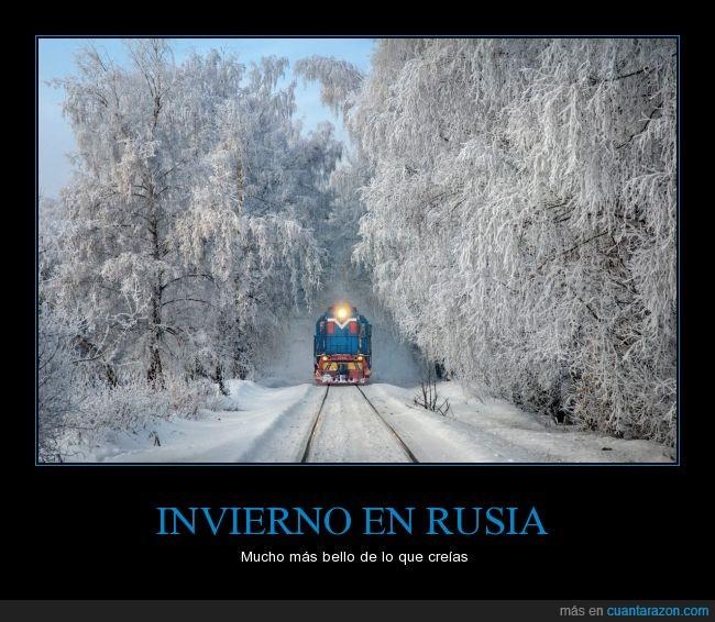 árboles,foto,invierno,nieve,rusia,sospechosamente no hay vodka,tren