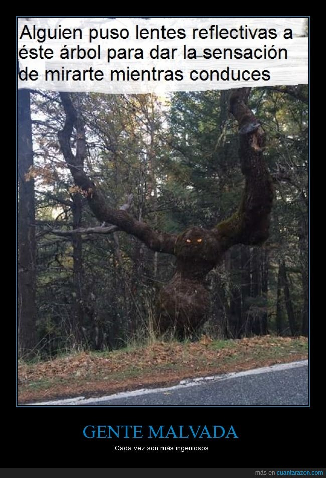 árbol,conductor,fantasma,imagínatelo por la noche,ojos