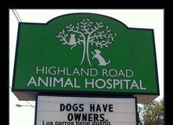 Enlace a Aquí trabajan veterinarios muy sabios