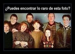 Enlace a LA FAMILIA WEASLEY