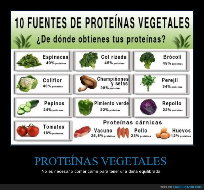carne,comida,dieta,pollo,proteinas,vegetales