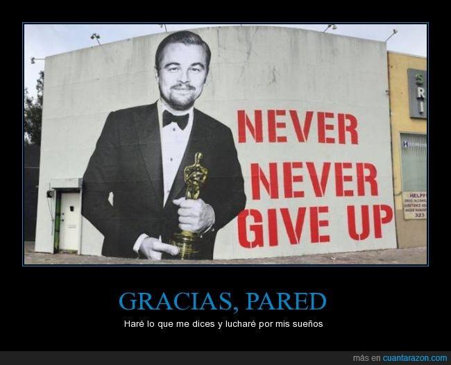 graffiti,Leonardo Dicaprio,never give up,oscar,rendir