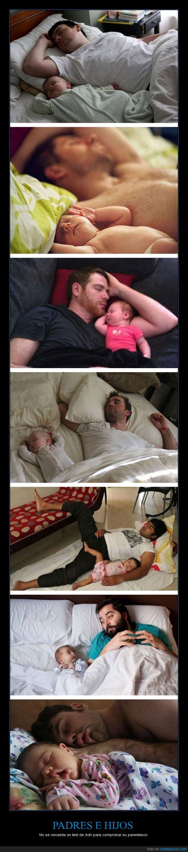 cama,dormir,genial,hijos,iguales,padre,posicion