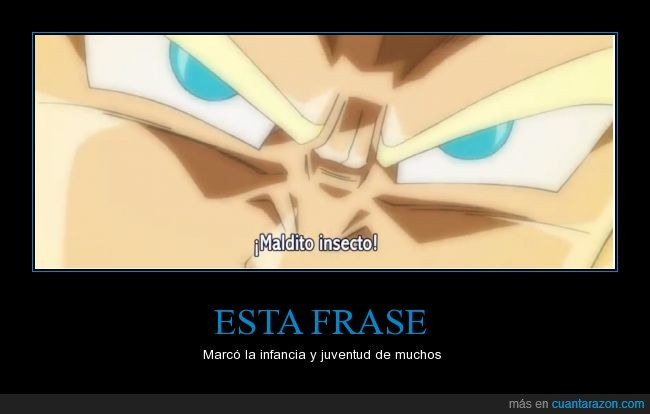 dragon ball,fase Dios,maldito insecto,super,vegeta
