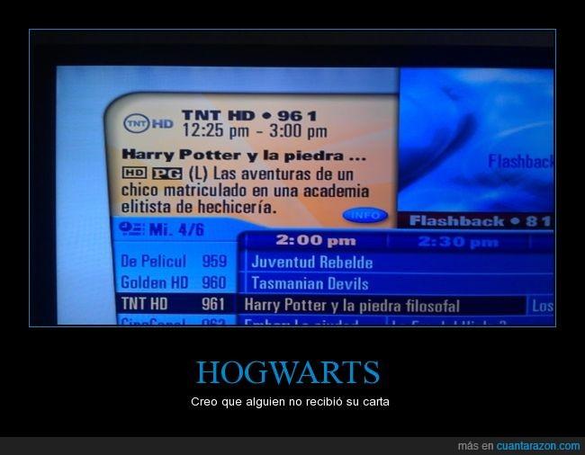 academia,elitista,explicación,harry potter,hechicería,hogwarts,magia,película,trabajar