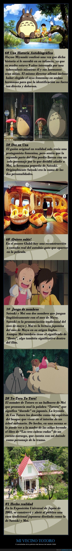 Gatobus,Hayao Miyazaki,Mi vecino totoro,studio Ghibli,Totoro
