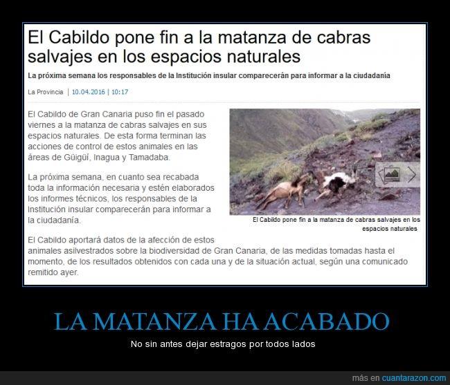 cabildo,cabras,canarias,en las Islas galápagos,en mi país las cabras son un problema,espacios naturales,matanza,no conozco toda la historia así que no tomo partido,salvajes
