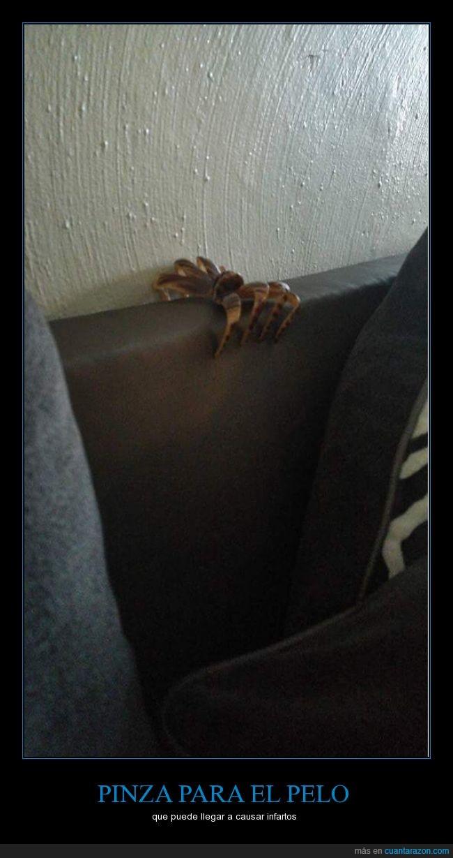 a primera vista es lo que parece,araña,infarto,pelo,pinza,pinza para pelos