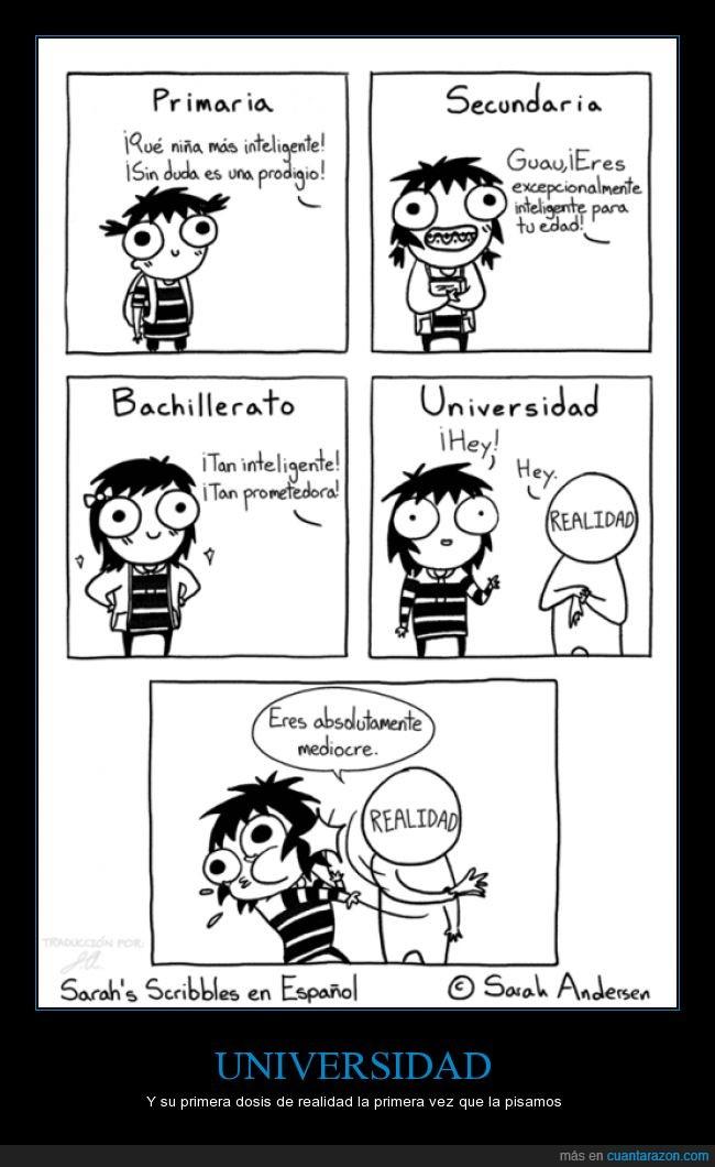 estudios,realidad,universidad