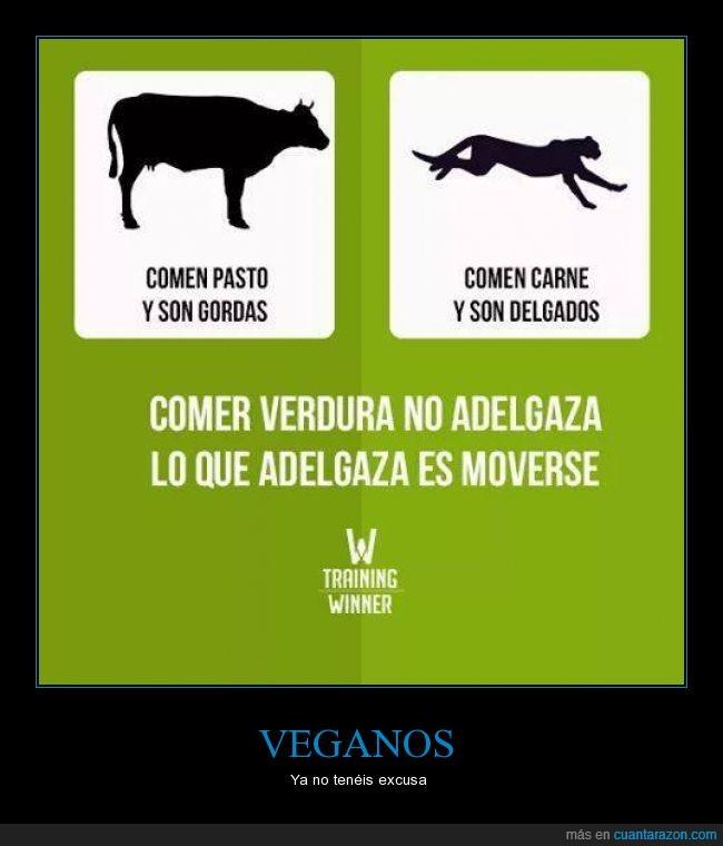 carne,comer,guepardo,leopardo,salud,vaca,veganismo,vegetarianismo,verdura