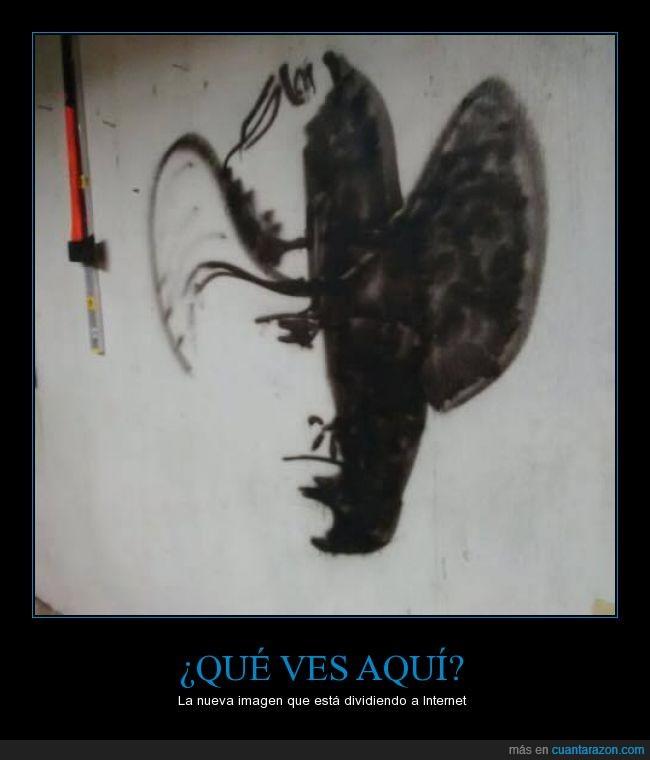 cowboy,ilusion,imagen,latigo,mariposa,optica,pulmón con alas,rara,vaquero