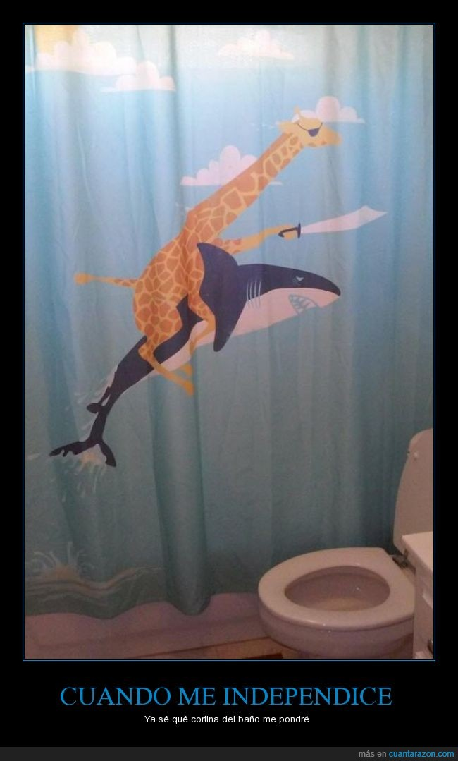 baño,cortina,espada,jirafa,ojo,parche,pirata,tiburon,wtf