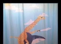 Enlace a Una jirafa pirata a lomos de un tiburón con ojeras. TODO NORMAL.