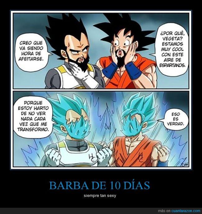 barba,Goku,pelo,saiyan,Transformación,Vegeta