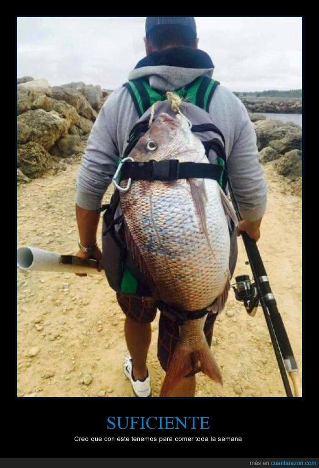 caña,gigante,pesca,pescado,pez