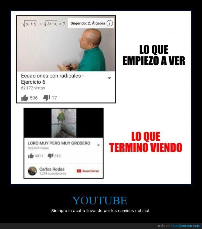 clase,cosas random,internet,tutoriales,youtube