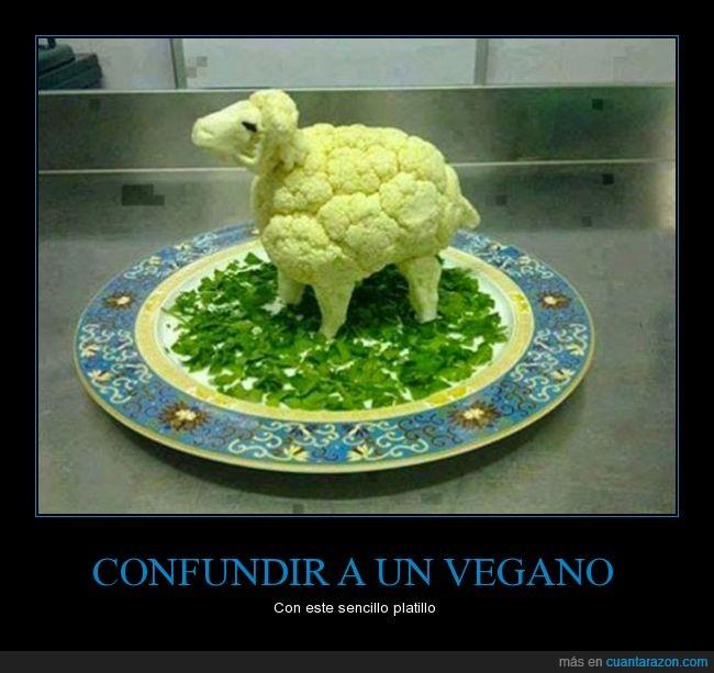 borrego,carne,coliflor,oveja,platillo,Vegano,verdura