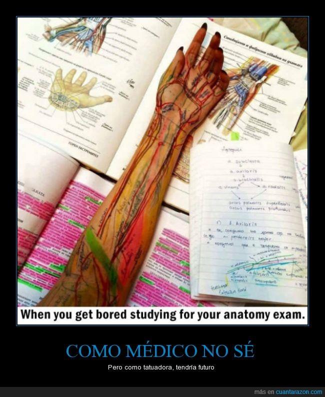 Cuánta razón! / ¿Vosotros qué hacéis cuando os aburrís de estudiar?