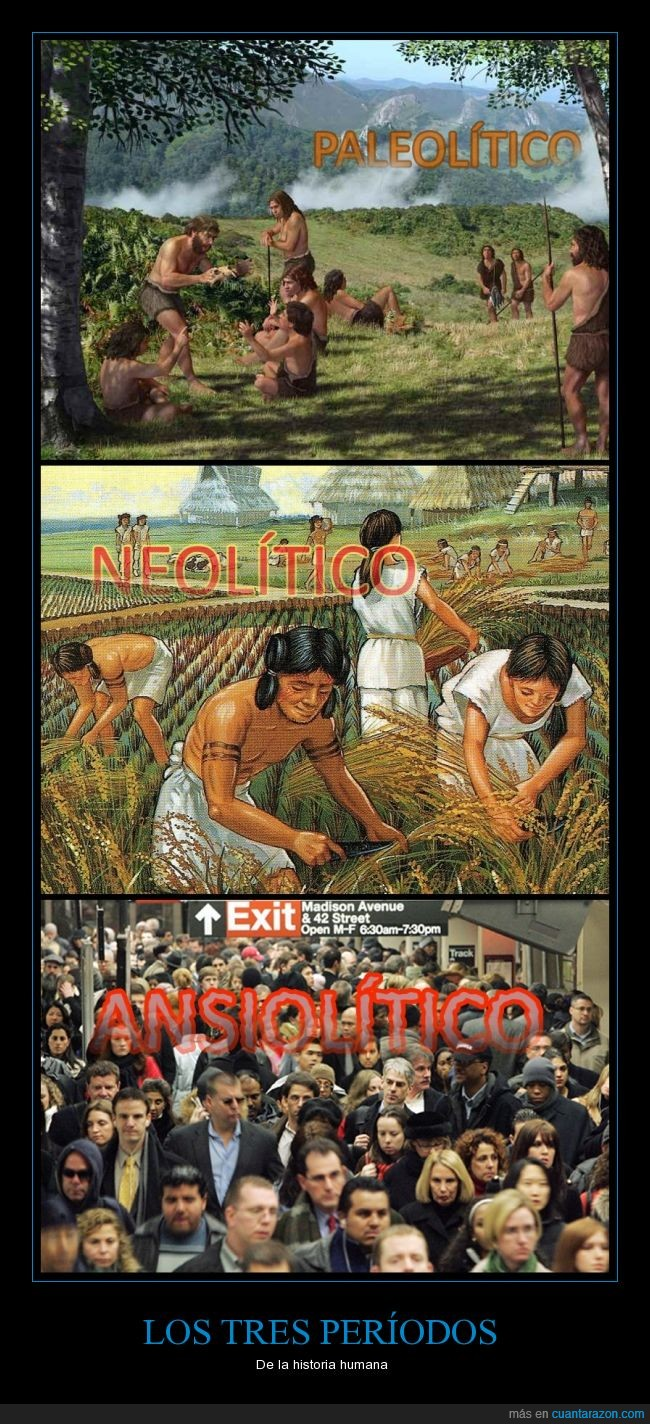 ansiolitico,contemporáneo,moderno,neolitico,paleolitico