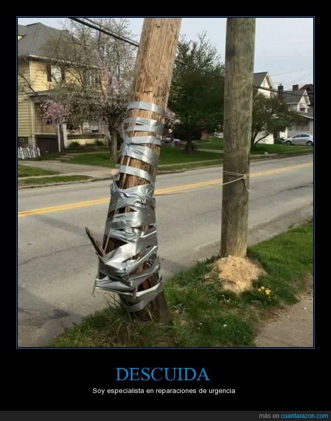 árbol,arreflar,celo,cinta,cutre,poste,precinto,roto