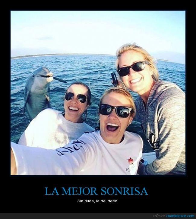 chicas,delfin,foto,invitado,photobomb,selfie,sorpresa