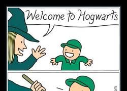 Enlace a ¡Bienvenido a Hogwarts, toma tu escoba!