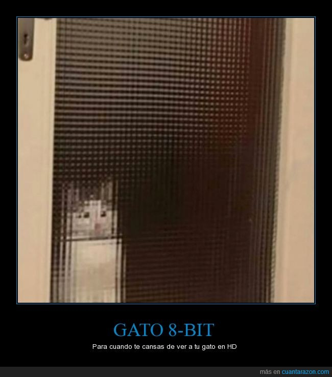 8bit,gato,hd,ilusion,pixelado,puerta