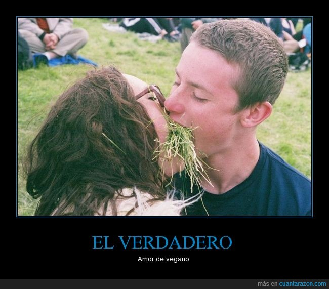 amor,beso,cesped,comer,enamorados,vegano