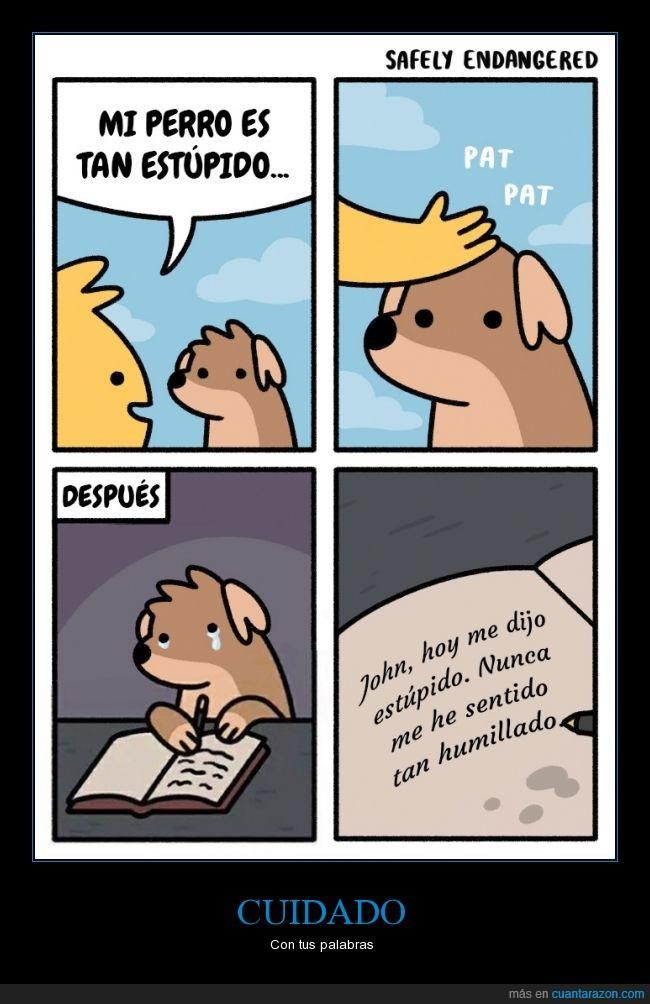 diario,estupido,herir,Perro,sentimientos,tonto