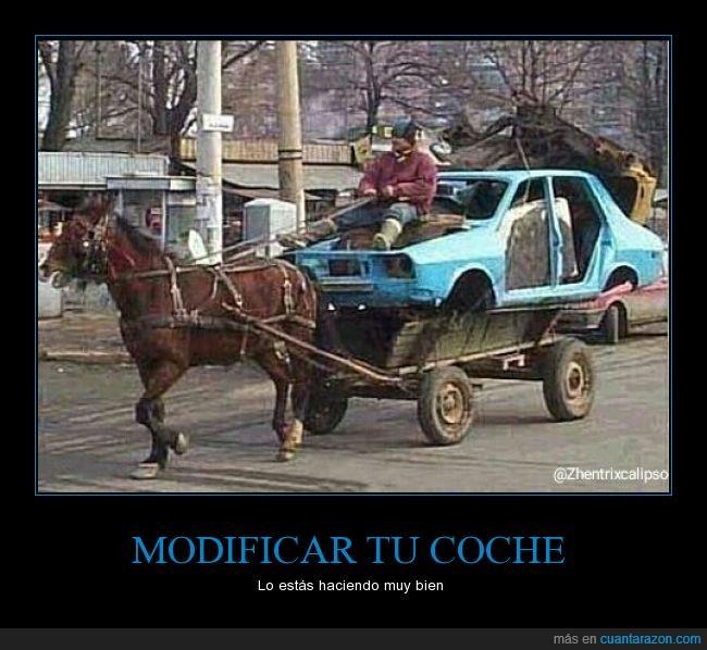 caballo,coche,modificar,tunear,wtf