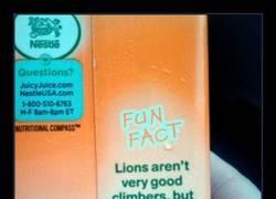 Enlace a Si Nestlé lo dice, Internet lo proporciona