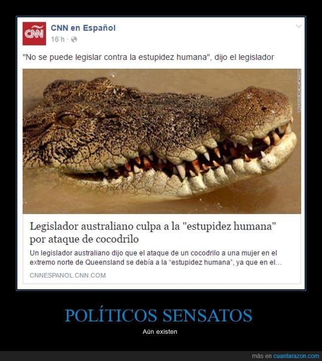 ataque,cocodrilo,estupidez,leyes,politico