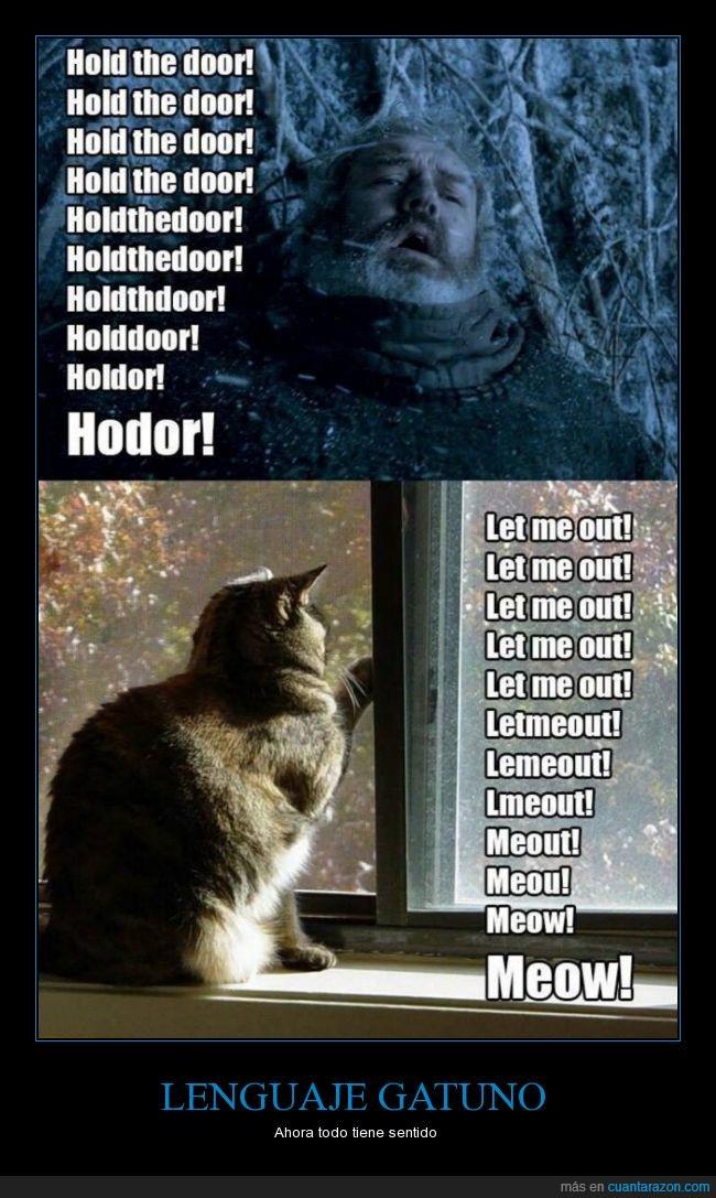animal,gatos,hodor,hold the door,juego de tronos,lenguaje,meaw
