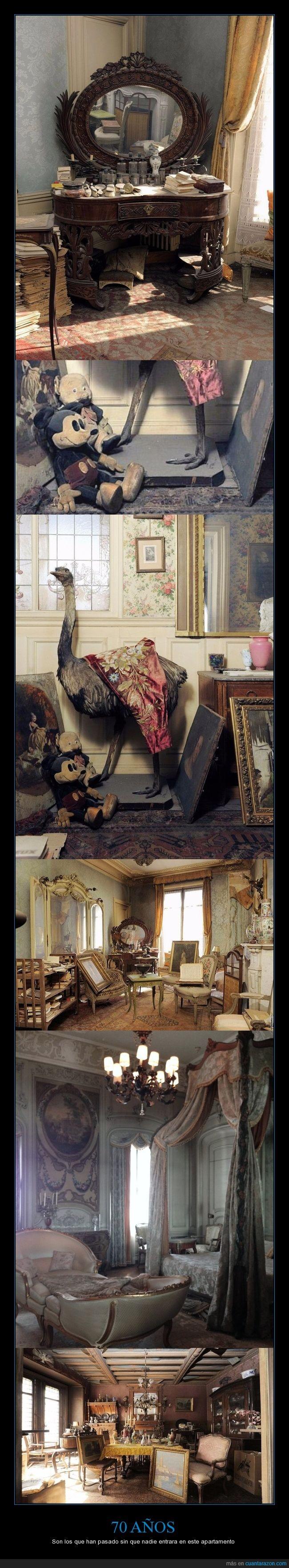 70 años,apartamento,casa,conservación,francia