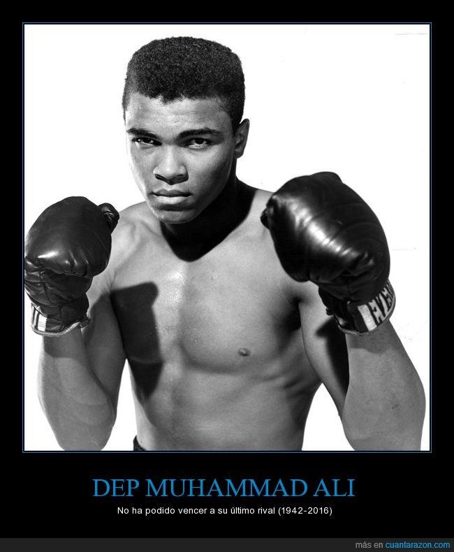 boxeo,muerte,Muhammad Ali,vida