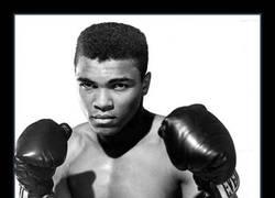 Enlace a Nos ha dejado una leyenda del boxeo
