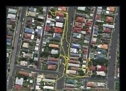 Enlace a Trackers GPS que muestran la actividad gatuna durante la noche