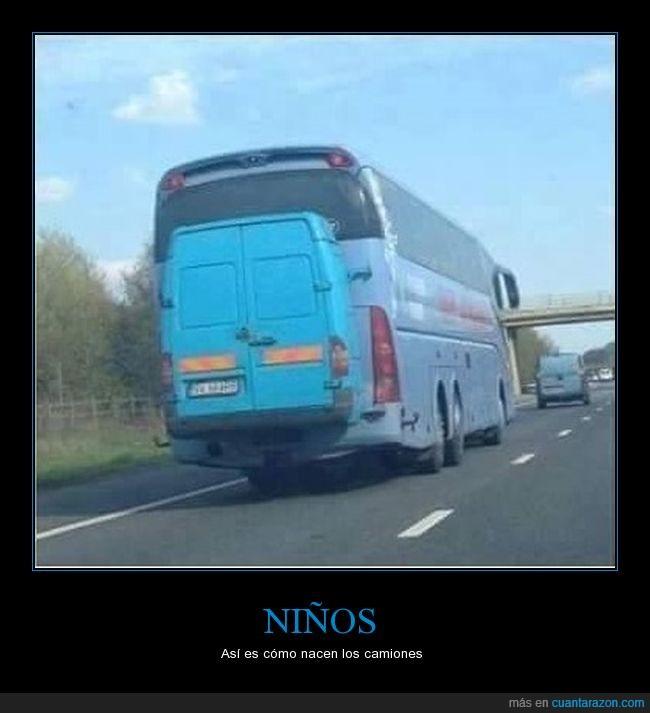 autobús,camión,detrás