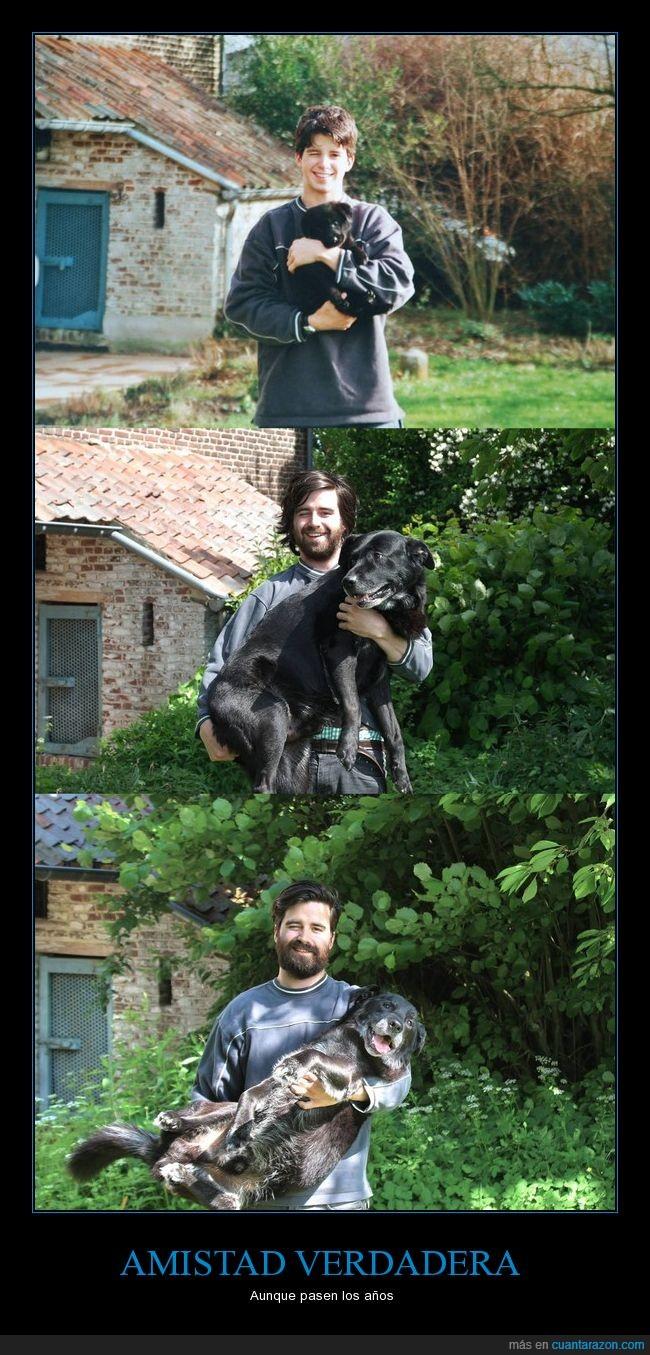 amigos,amistad,años,perro,tío