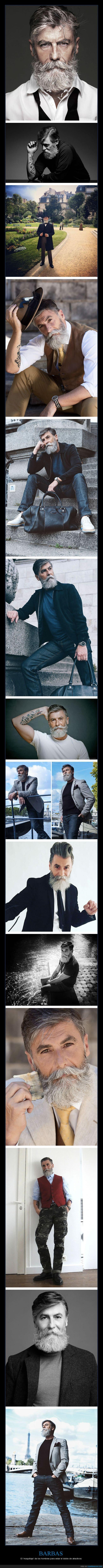 barba,hombre,modelo,sesentón