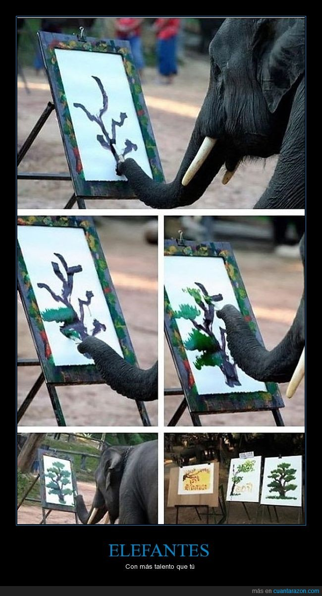 arbol,elefante,especial,pintar