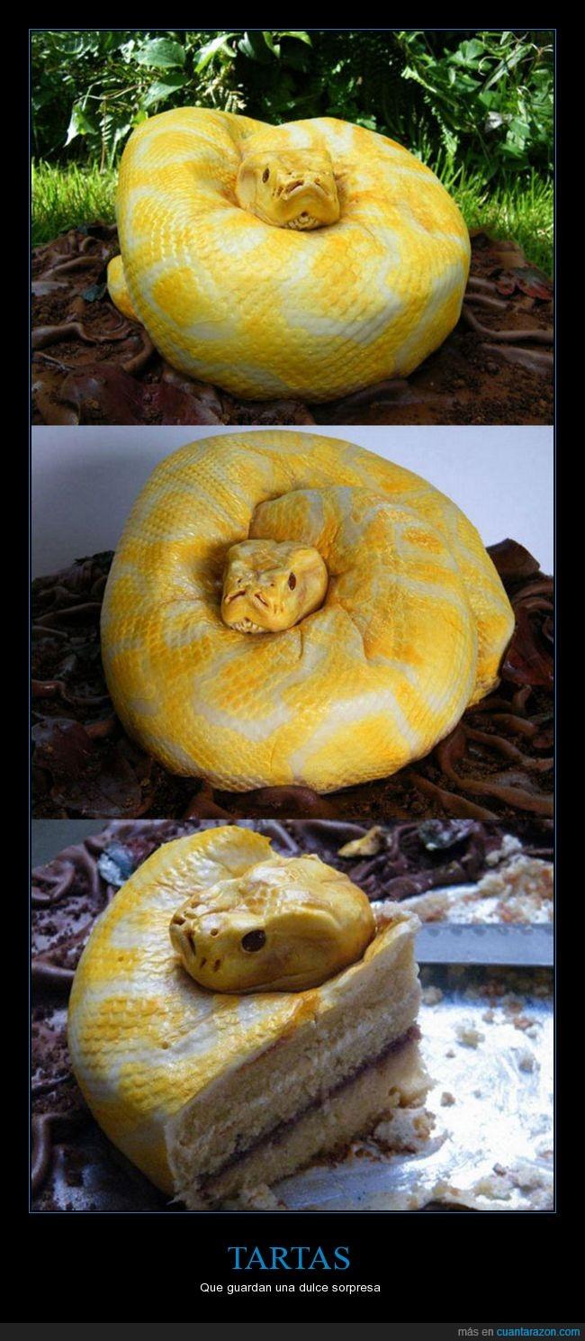 serpiente,tarta