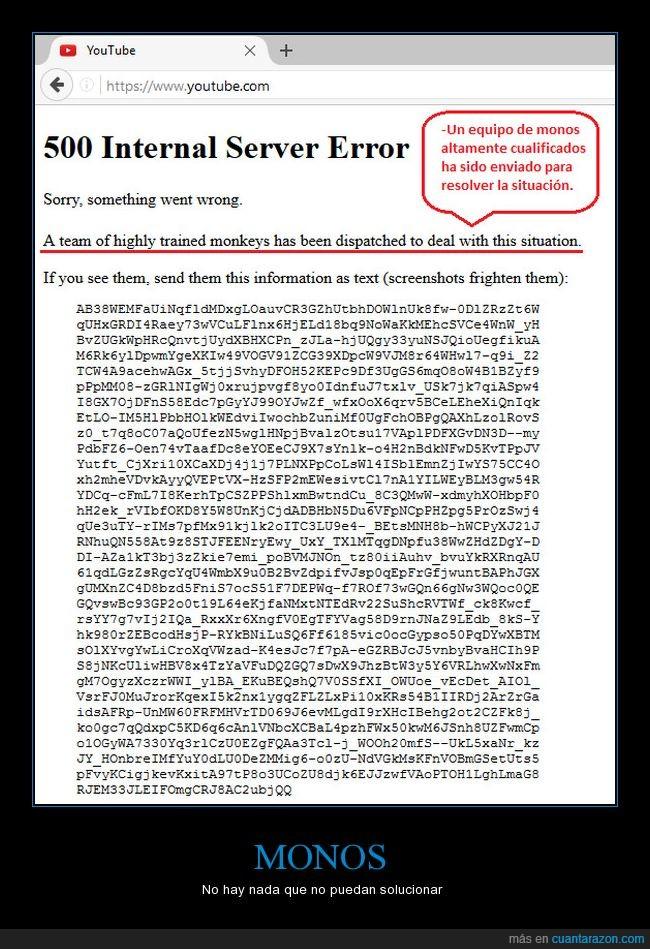 administrador de sistemas,error,fallo,lol,monos,server,youtube