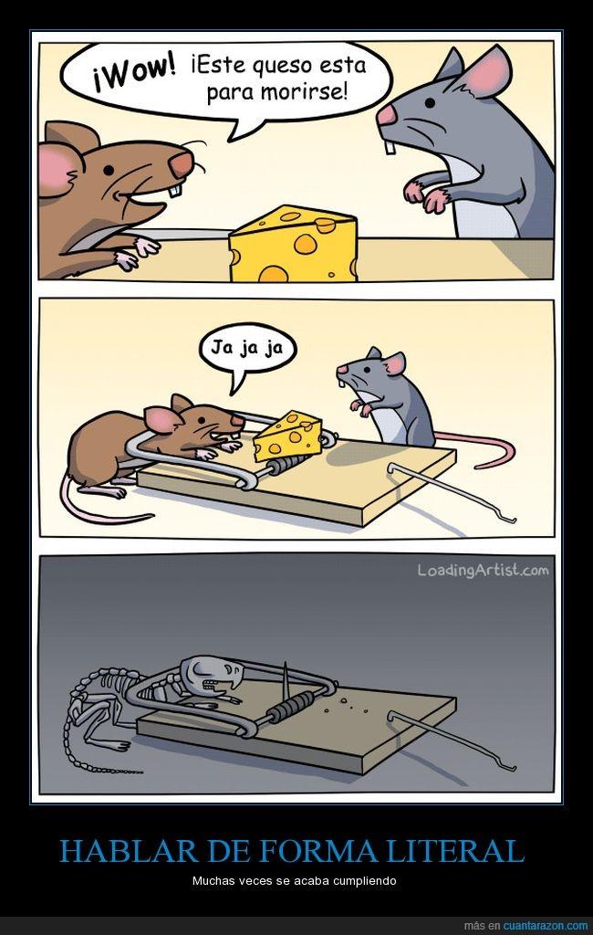 Queso,Rata,Ratones,Trampa